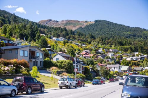_Baldwin Street, New Zealand